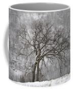 Old Elm Coffee Mug