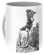 Old Gnarly Tree Coffee Mug