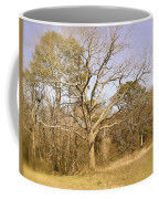 Old Haunted Tree Coffee Mug