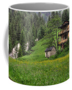 Old House On The Green Field Coffee Mug