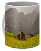 Old Houses Coffee Mug
