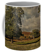 Old John Bradgate Park Leicestershire Coffee Mug by John Edwards