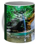 Old Mans Cave Lower Falls Coffee Mug