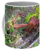 Old Rusty Bike In The Weeds 2 Coffee Mug
