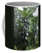 Old Section Mt Hope Cemetery Coffee Mug