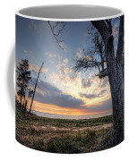 Old Tree Sunset Over Oyster Bay Coffee Mug