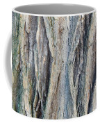 Old Tree Wrinkles Coffee Mug