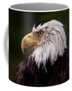 Old Warrior Coffee Mug