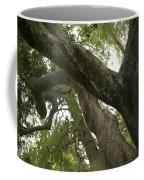 Old World Soul Coffee Mug