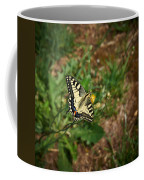 Old World Swallowtail. Montorfano. Cologne Coffee Mug