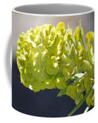 Olive Fluorescence Coffee Mug