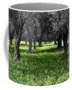Olive Grove Italy Cbw Coffee Mug