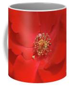 Olympiad Hybrid Coffee Mug