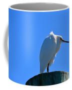 On A Pylon Coffee Mug