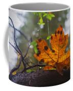 On Display Coffee Mug