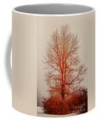 On Fire In The Fog Coffee Mug by Lois Bryan