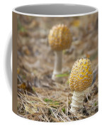 On The Forest Floor Coffee Mug