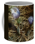 On The Forest Floor Coffee Mug