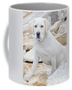On The Lookout Coffee Mug by Suzanne Oesterling