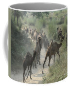 On The Road To Pushkar Coffee Mug