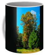 On Top Of Maple Ridge - Old Forge New York Coffee Mug by David Patterson
