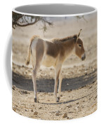 Onager Equus Hemionus Coffee Mug
