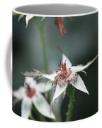 Once So Vibrant Rose Coffee Mug
