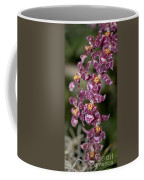 Oncidium Coffee Mug