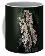 Oncidium Twinkle Fragrance Fantasy Coffee Mug