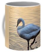 One Last Swim Coffee Mug