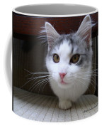 One Legged Kitty Coffee Mug