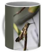 One Out Of Place - Hummingbird Coffee Mug