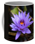 One Purple Water Lily Coffee Mug by Carol Groenen