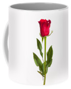 One Red Rose Coffee Mug