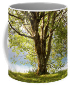 One Spring Tree Coffee Mug
