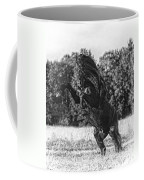 One Trick Pony Coffee Mug