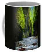 Oneonta River Gorge Coffee Mug