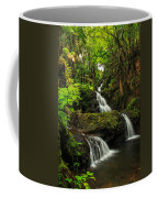 Onomea Falls Coffee Mug