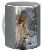 Onyo #15 Coffee Mug