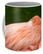 Flamingo With An Open Eye Coffee Mug