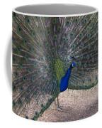 Open Feathers Coffee Mug