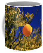 Orange And Blue Sky Coffee Mug