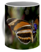Orange Banded Butterfly Coffee Mug