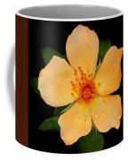 Orange Blossom Coffee Mug