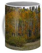 Orange Blossom Special Coffee Mug