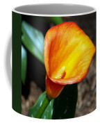 Orange Calla Lilly Flower In The Garden Coffee Mug