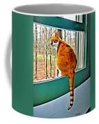 Orange Cat In Window Coffee Mug
