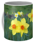 Orange Daffodils Flowers Spring Garden Coffee Mug