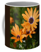 Orange Daisy Coffee Mug