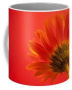 Orange Delight Coffee Mug
